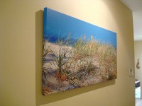 "Grass 48""x24"" - 