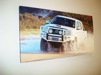"Canvas 40'x24"" - 