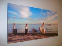 "Pelicans 48""x24"" -  Photographer Tania Bruhl"